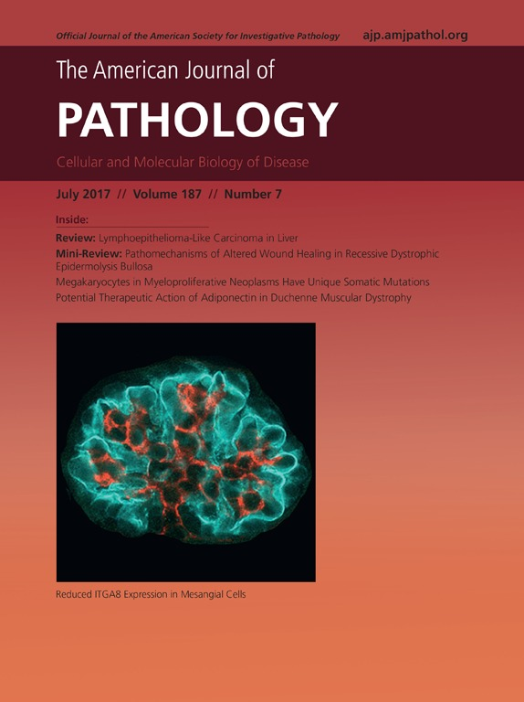 Bildergebnis für american journal of pathology