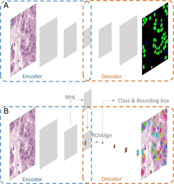 Pathology Image Analysis Using Segmentation Deep Learning Algorithms